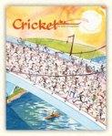 cricket-may-050612